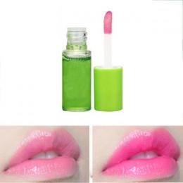 Chronić usta błyszczący makijaż nawilżający odżywczy kobiety naturalne błyszczyk makijaż błyszczyk Aloe Vera roślin przezroczyst