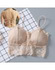 Kobiety Sexy crop top bandaże Pad biustonosz gorset Streetwear Bralette Top czysty kolor stanik topy mujer verano